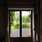 looking out through the kitchen door.
