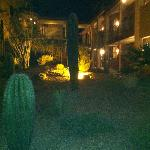 Night view of landscaping