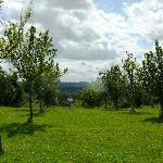 Photo of Le Mont d'Auge