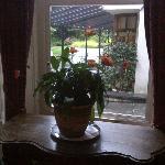Scorcio del giardino da una sala