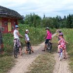 explore the old rail line by bike in Algonquin Park
