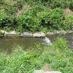 Little Sugar Creek Natural Area