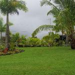 View from front yard, Hilo bay in distance