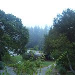 View from cabin 15 in the early morning
