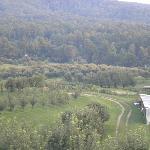 Carver Orchards & Farm Market