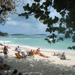 une vue de la plage depuis le bar restaurant