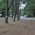 View of RV sites