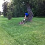The bent tree trunk came in handy