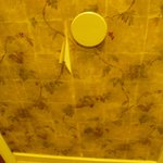 Wallpaper peeling in the Bathroom - Shabby