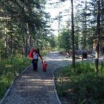 Walking up to our cottage