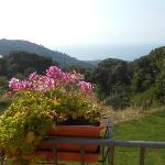 From veranda outside room, overlooking the sea