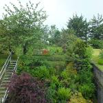 Zimmerblick zum Garten