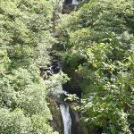 The actual falls - vegetation could do with cutting back - hard though!