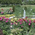 Flower Garden and Fountain