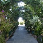 Walkway to Celadon restaurant