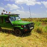 Photo de Kenya Wilderness Safaris - Day Tours