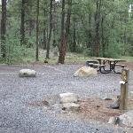 Site B39