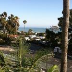 Ocean View��