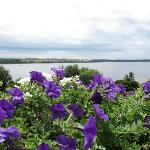 The view of the bay from our front porch - beautiful flower boxes on our railing.