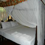 Room had two beds like these
