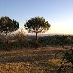 View from Sovigliano