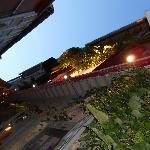 Sur la terrasse, une jolie vigne vierge