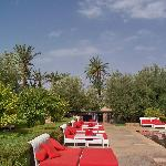 vue du jardin autour piscine rouge