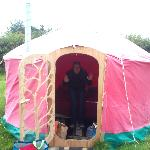 The Budget Red Yurt