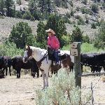 The Bucking S Ranch Foto