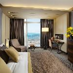 Executive Carmel & Sea View