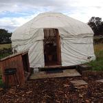 The front of Blackberry yurt