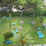 Vue sur jardin depuis la chambre