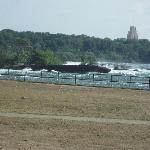 Old scow wrecked in 1918 just above Niagara Falls