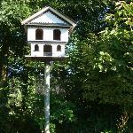 A bird house for the many wild birds.