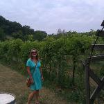 Foto de Iowa Wine Tours