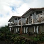 Tea Nui facade