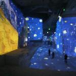2012 expo van gogh /Gauguin