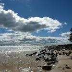 Noosa Beach Perfect