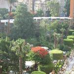 Hotel gardens from room