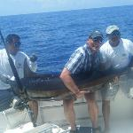 200lbs+ Blue Marlin, caught & released :)