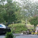 Pub riverside garden