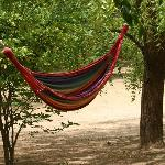 Each bungalow also has a hammock