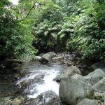 river/rio
