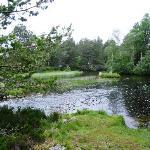 Local river