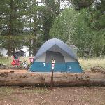 Tent Site #3