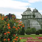 Greenhouse in the gardens- don't miss it- its on the far end of the Sissy gardens (45677291)