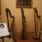 collezione di arpe