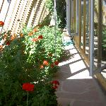 Walkway in front of Earthship