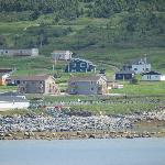Gros Morne Suites