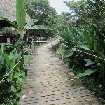 Grounds Walkway